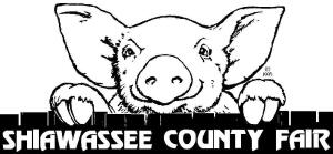 Shiawassee County Fair Lamb Auction