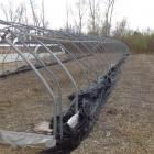 Hoop House- Approx. 96' x 15'- 1440sf- includes everything inside