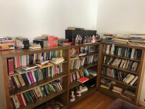 Contents on and in Bookshelves, books, VHS, figurines, Various subjects and authors