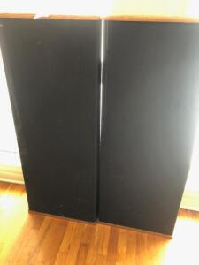 Set of DFC Timeframe TF1000 Speakers - 4' tall