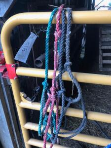 (4) Rope Cattle Halters
