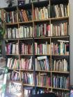 Large Bookshelf and Contents of Cook Books